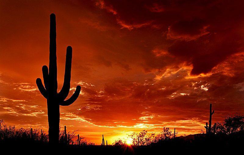Tucson, AZ Camp